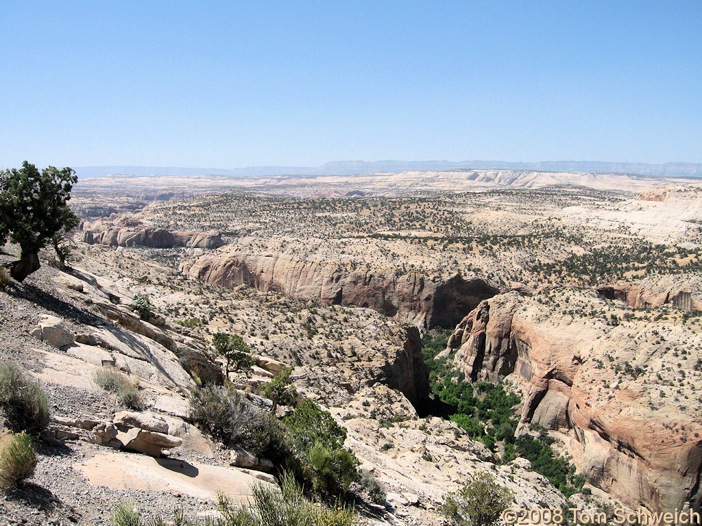 Utah, Garfield County, Calf Creek