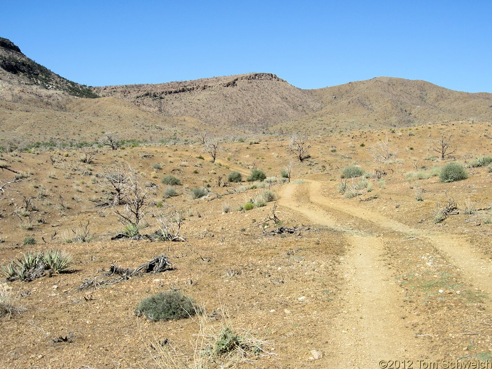 California, San Bernardino County, Wild Horse Canyon