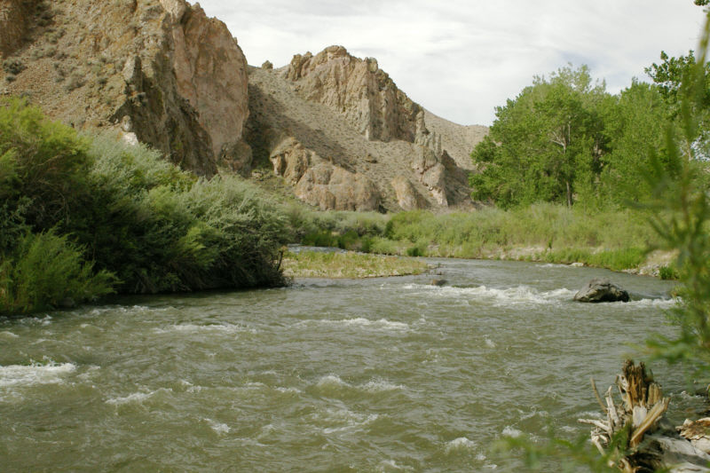 Photo west walker river in wilson canyon for Walker river fishing