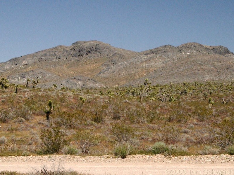 Mesquite Mountains, San Bernardino County, California