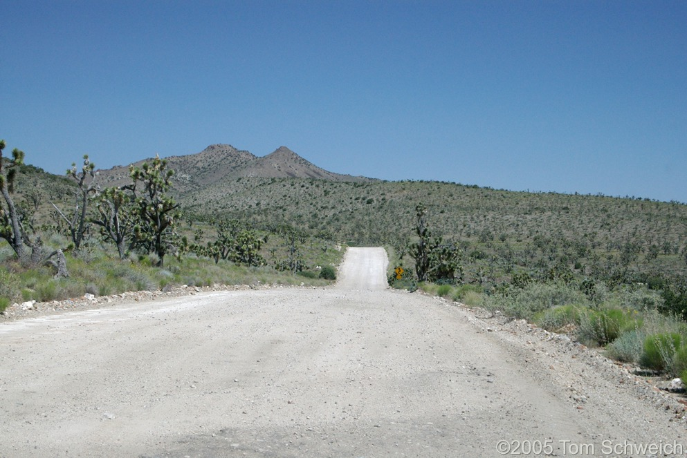 Ivanpah Road, Mojave National Preserve, San Bernardino County, California