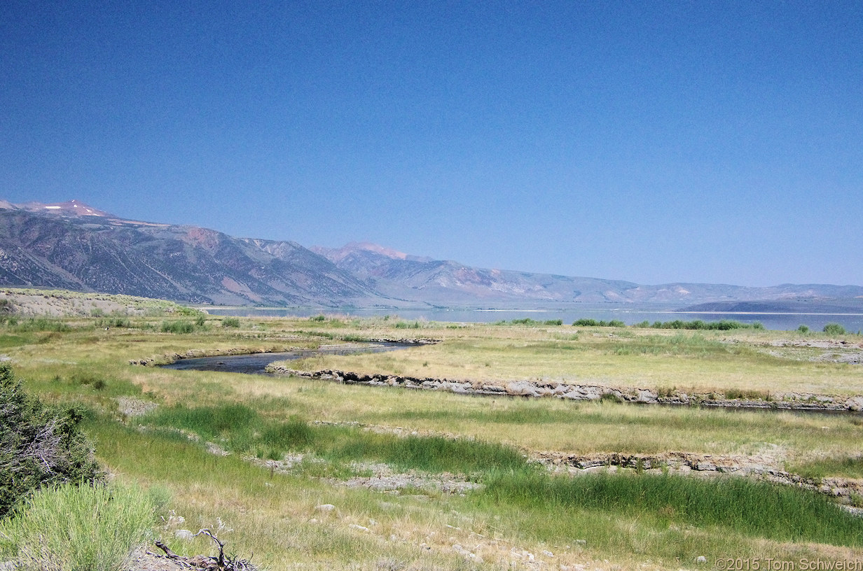 California, Mono County, California, Mono County, Rush Creek delta