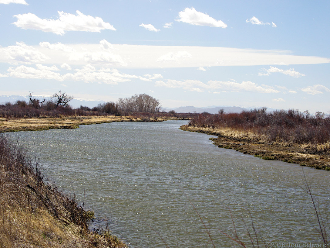 Rio Grande River in the Alamosa National Wildlife Refuge