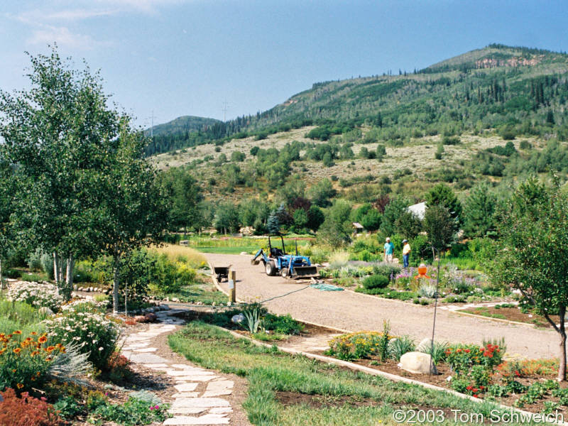 Yampa River Botanic Park in Steamboat Springs