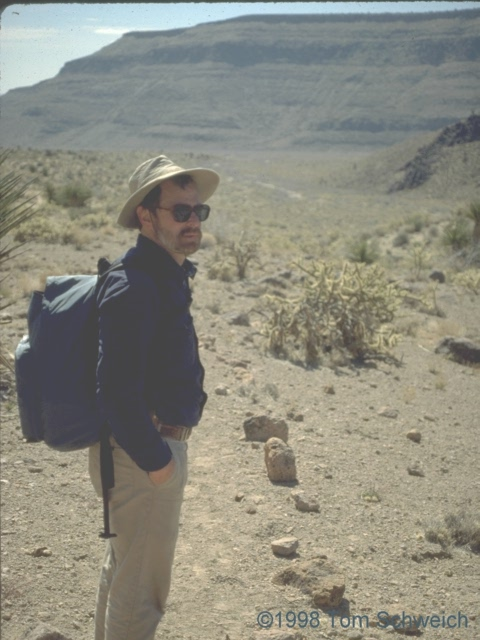 Musing about trails in Mojave National Preserve.